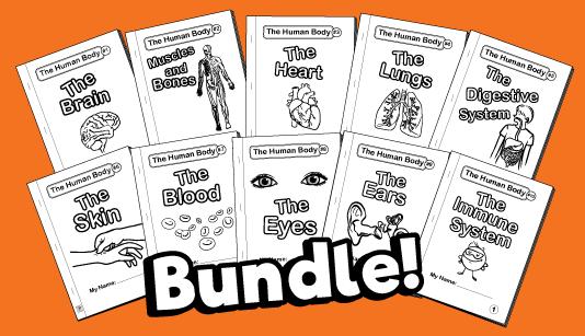 Human-body-bundle
