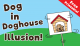 Dog-in-Doghouse-Illusion