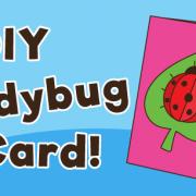Ladybug-Card