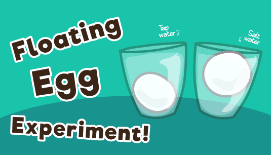 Floating Egg Science Experiment for Kids